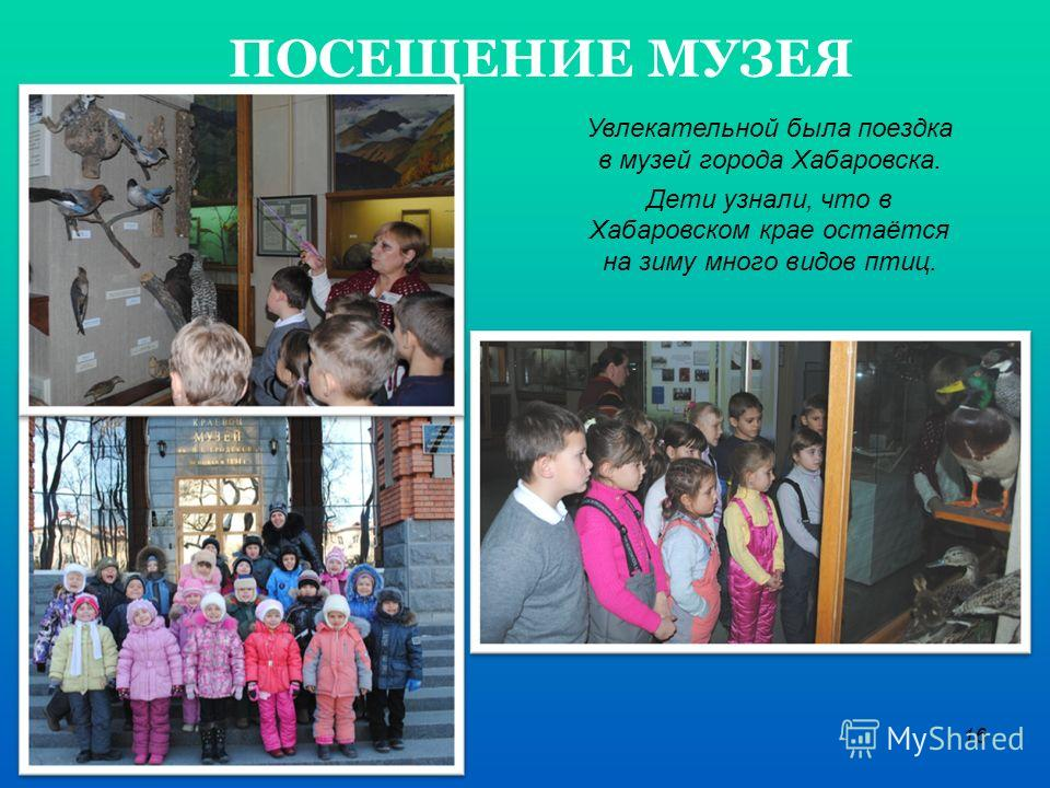 16 ПОСЕЩЕНИЕ МУЗЕЯ Увлекательной была поездка в музей города Хабаровска. Дети узнали, что в Хабаровском крае остаётся на зиму много видов птиц.