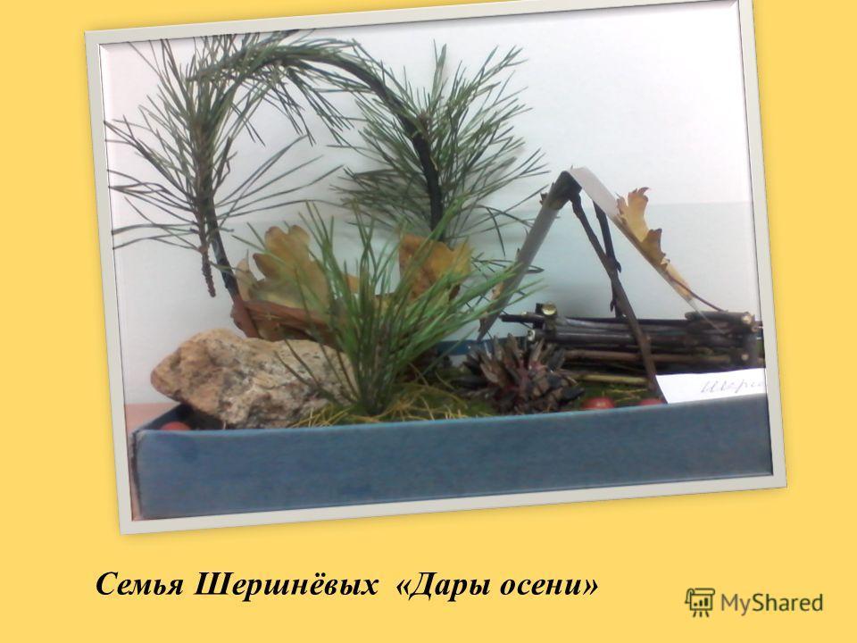 Семья Шершнёвых «Дары осени»