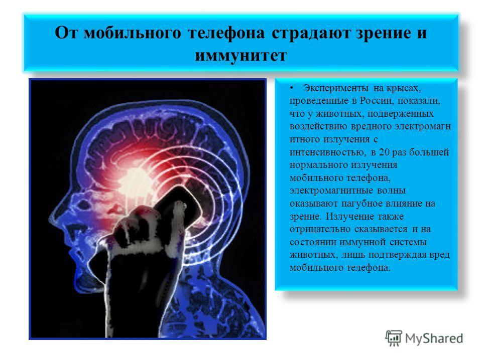 От мобильного телефона страдают зрение и иммунитет Эксперименты на крысах, проведенные в России, показали, что у животных, подверженных воздействию вредного электромагн итного излучения с интенсивностью, в 20 раз большей нормального излучения мобильн