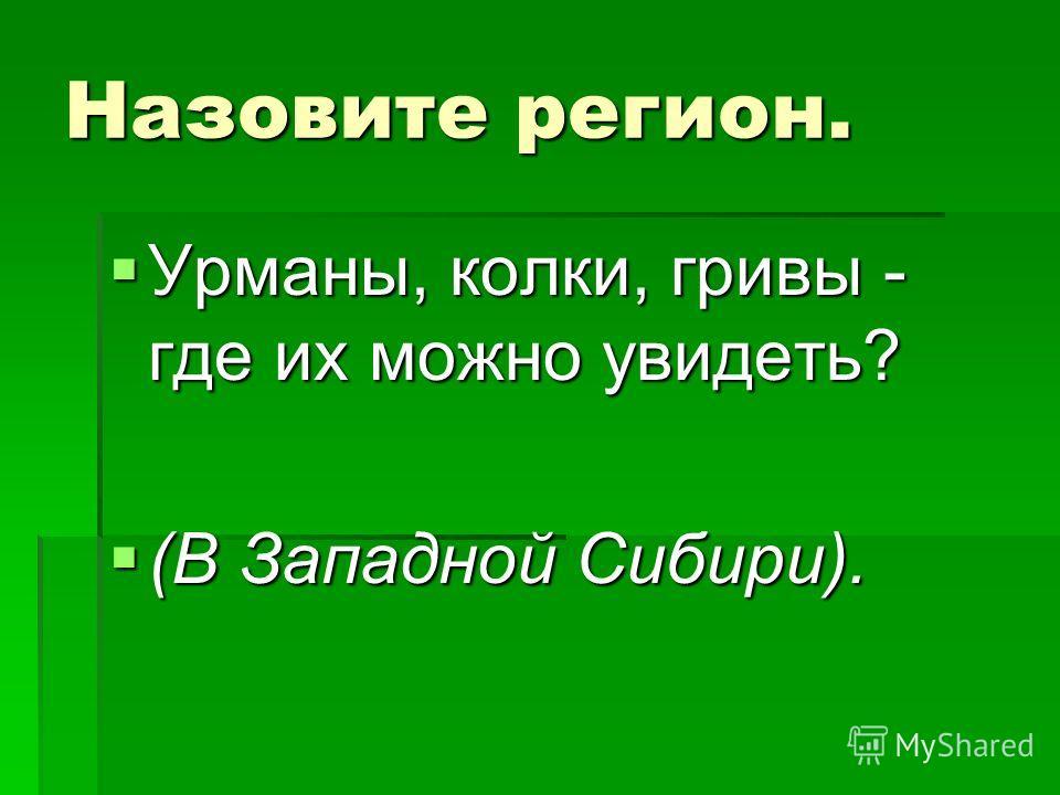 Назовите регион. Урманы, колки, гривы - где их можно увидеть? (В Западной Сибири).