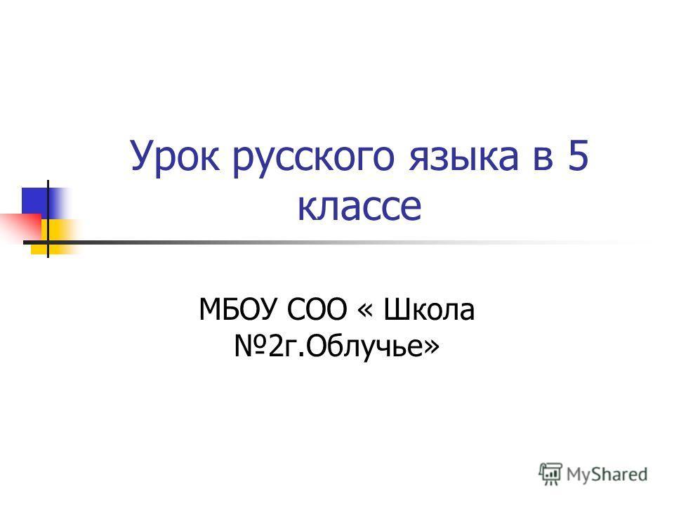 Урок русского языка в 5 классе МБОУ СОО « Школа 2 г.Облучье»