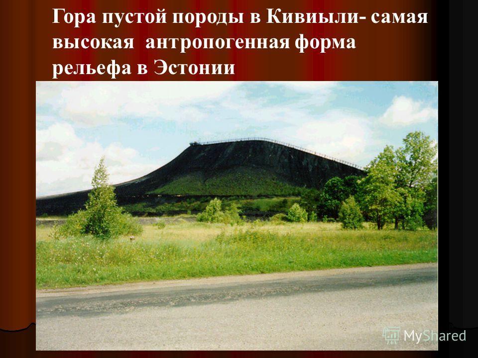 Гора пустой породы в Кивиыли- самая высокая антропогенная форма рельефа в Эстонии