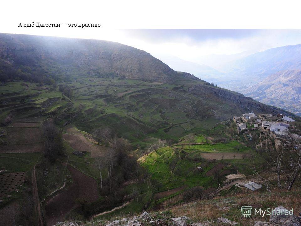А ещё Дагестан это красиво Пожалуйста, прикрепите сюда красивых фотографий! мне уже надо на пары :С