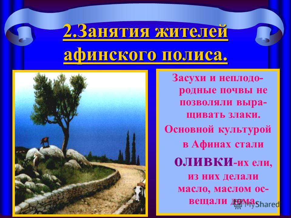 2. Занятия жителей афинского полиса. Засухи и неплодо- родные почвы не позволяли выра- щивать злаки. Основной культурой в Афинах стали оливки -их ели, из них делали масло, маслом ос- вещали дома.