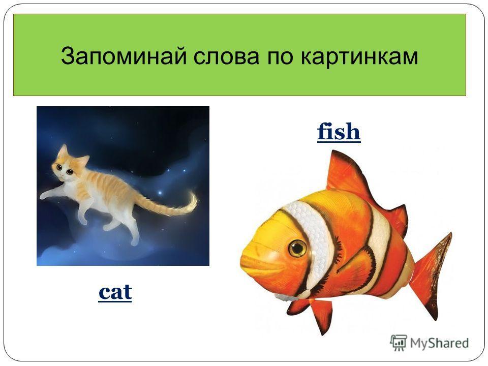 Запоминай слова по картинкам cat fish