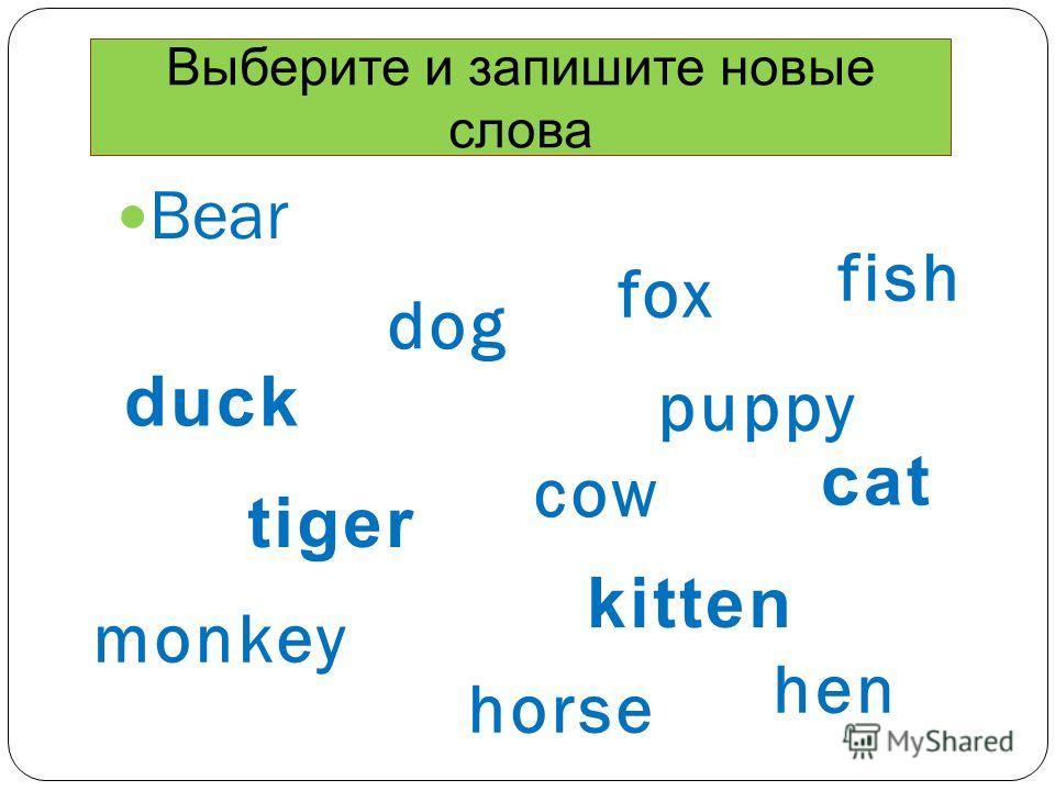 Bear dog fox cow monkey fish hen horse puppy tiger duck cat kitten Выберите и запишите новые слова