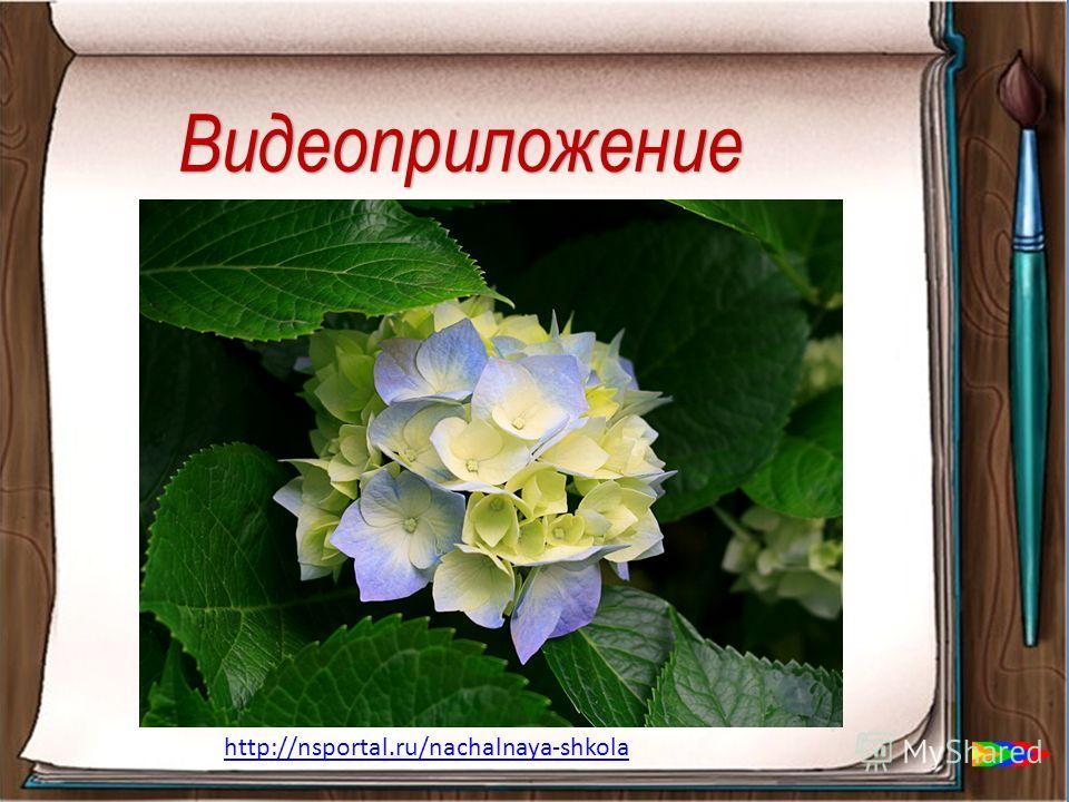 Видеоприложение http://nsportal.ru/nachalnaya-shkola