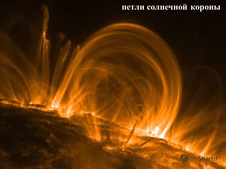 петли солнечной короны