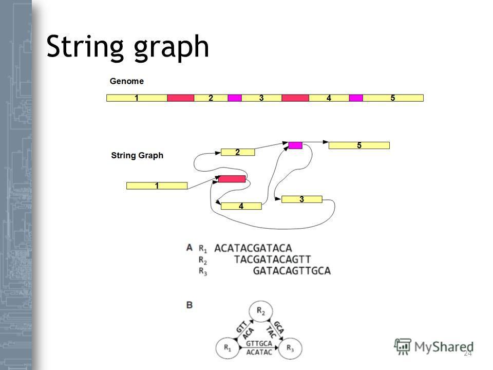 String graph 24