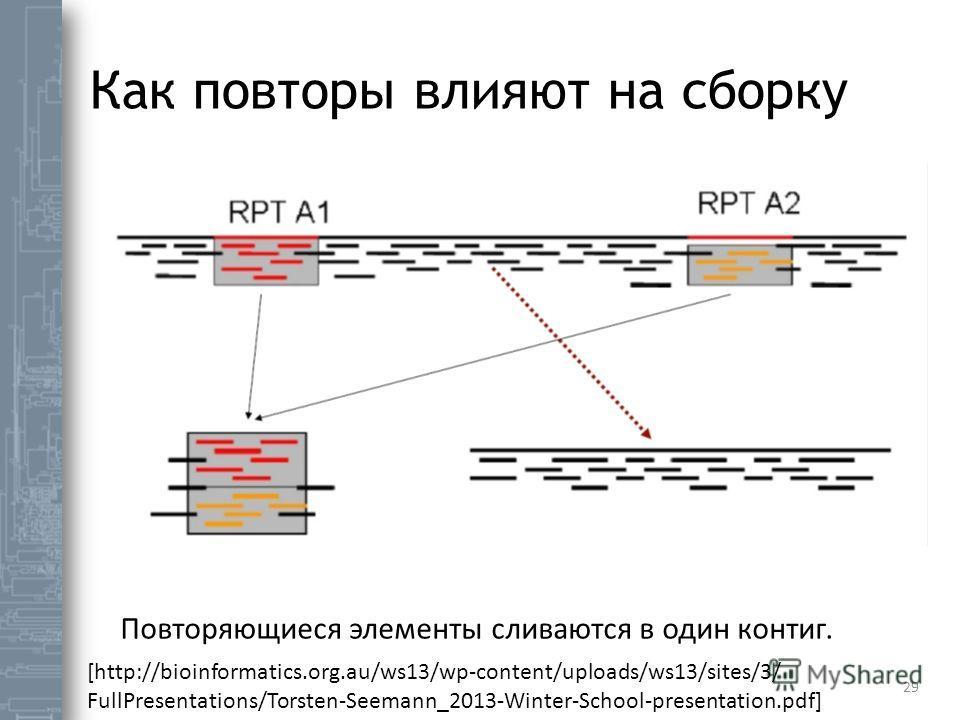 Как повторы влияют на сборку 29 Повторяющиеся элементы сливаются в один контиг. [http://bioinformatics.org.au/ws13/wp-content/uploads/ws13/sites/3/ FullPresentations/Torsten-Seemann_2013-Winter-School-presentation.pdf]