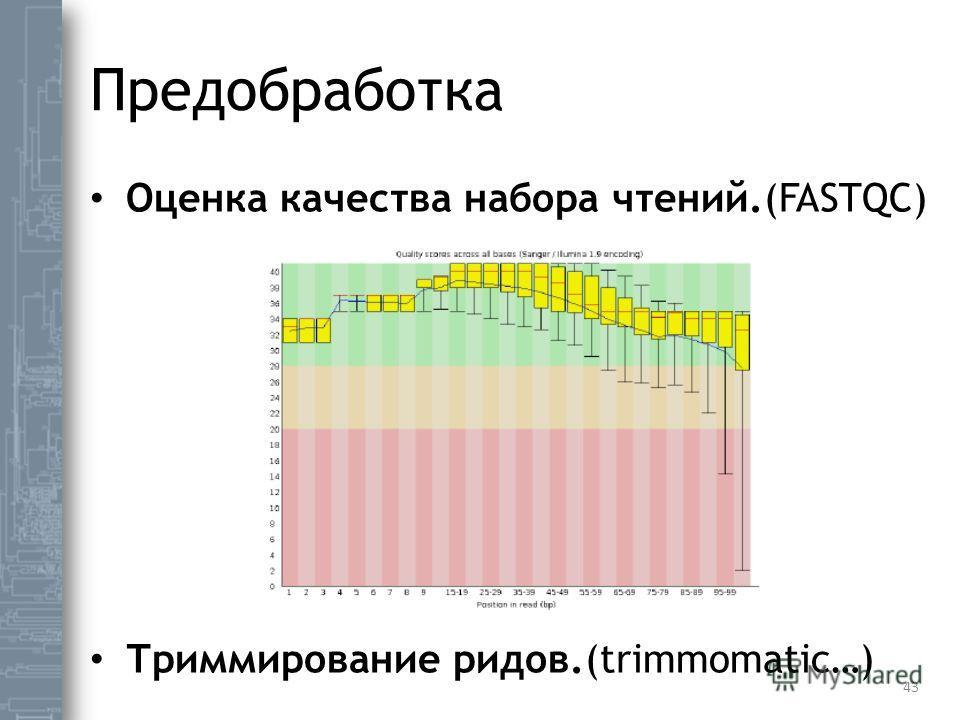 Предобработка Оценка качества набора чтений.(FASTQC) Триммирование ридов.(trimmomatic…) 43
