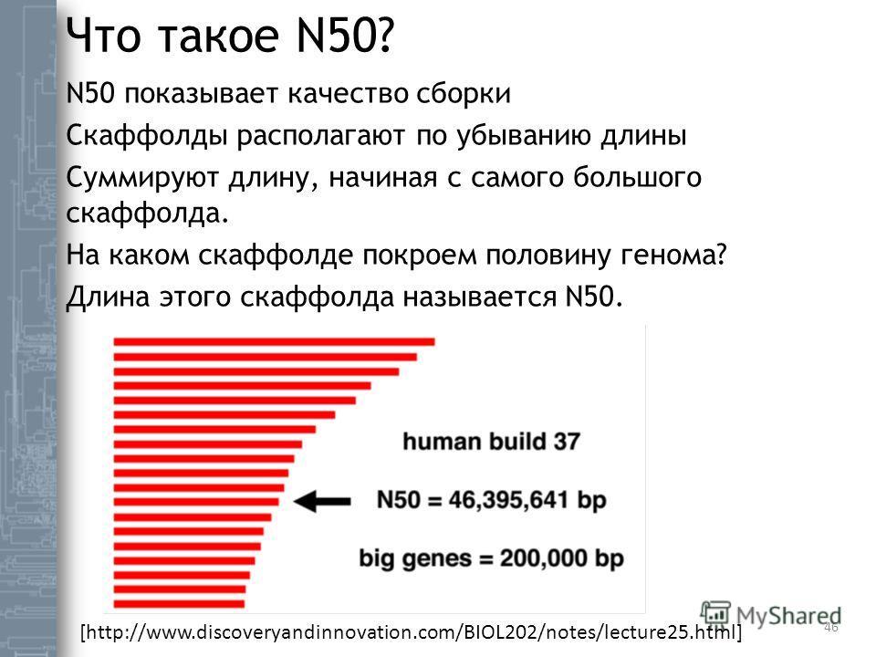 Что такое N50? N50 показывает качество сборки Скаффолды располагают по убыванию длины Суммируют длину, начиная с самого большого скаффолда. На каком скаффолде покроем половину генома? Длина этого скаффолда называется N50. 46 [http://www.discoveryandi