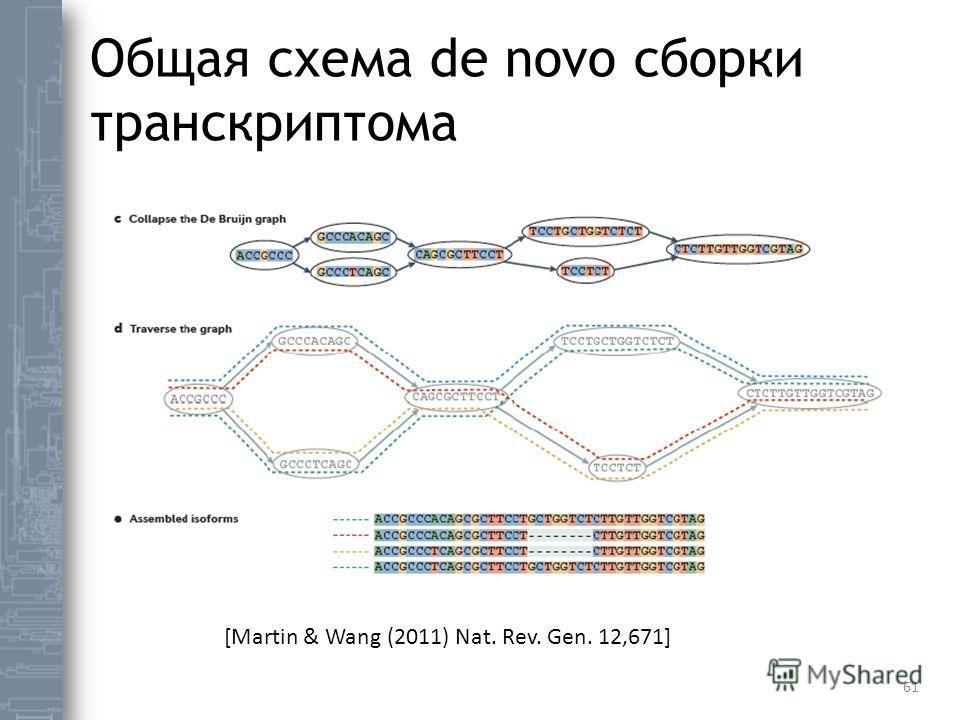 Общая схема de novo сборки транскриптома 61 [Martin & Wang (2011) Nat. Rev. Gen. 12,671]