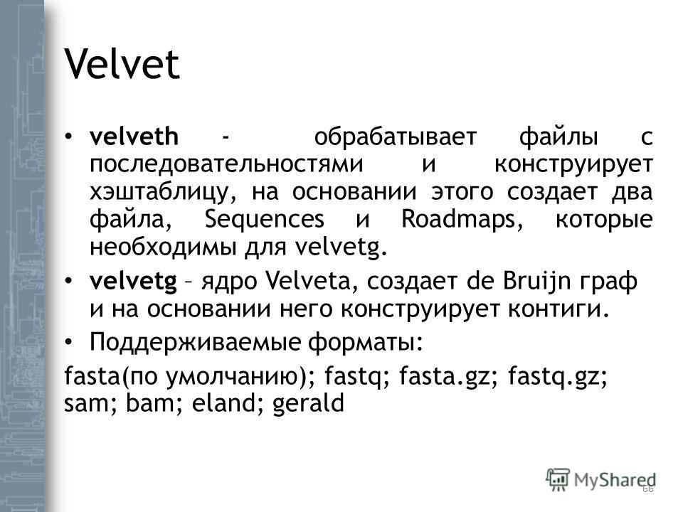 Velvet velveth - обрабатывает файлы с последовательностями и конструирует хэштаблицу, на основании этого создает два файла, Sequences и Roadmaps, которые необходимы для velvetg. velvetg – ядро Velvetа, создает de Bruijn граф и на основании него конст