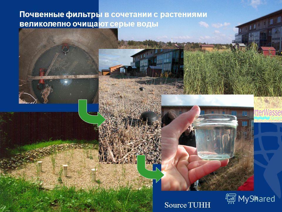 18 Source TUHH Почвенные фильтры в сочетании с растениями великолепно очищают серые воды