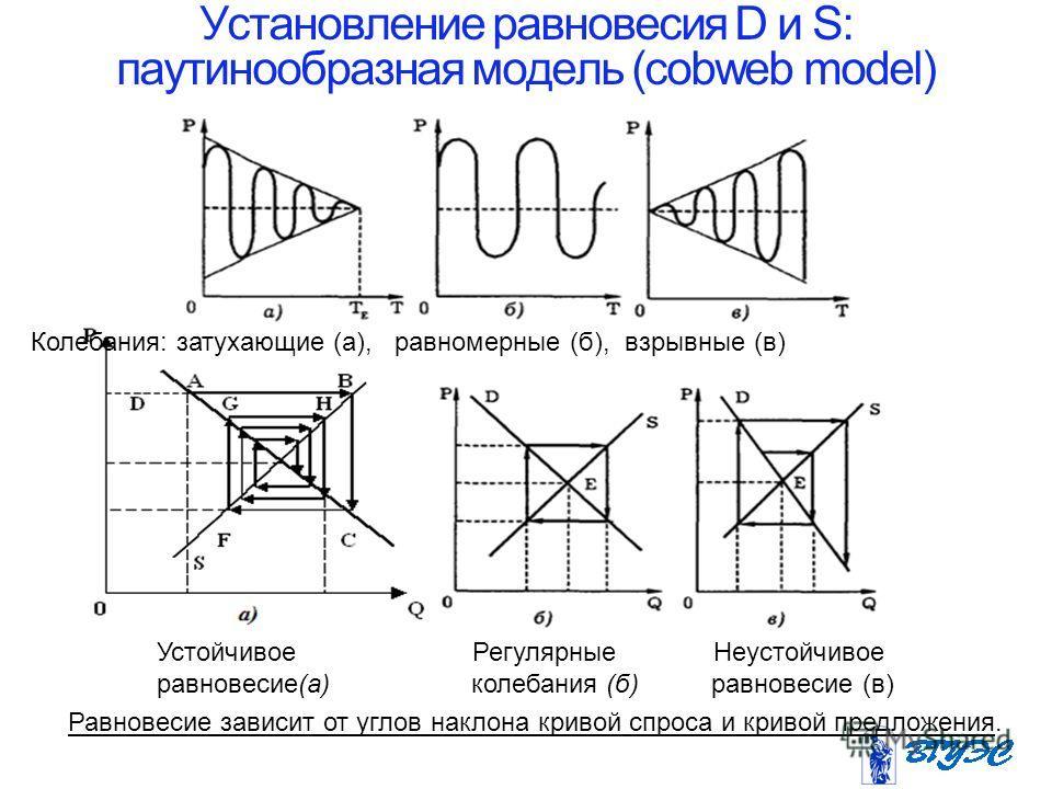 Установление равновесия D и S: паутинообразная модель (cobweb model) Устойчивое Регулярные Неустойчивое равновесие(а) колебания (б) равновесие (в) Колебания: затухающие (а), равномерные (б), взрывные (в) Равновесие зависит от углов наклона кривой сп