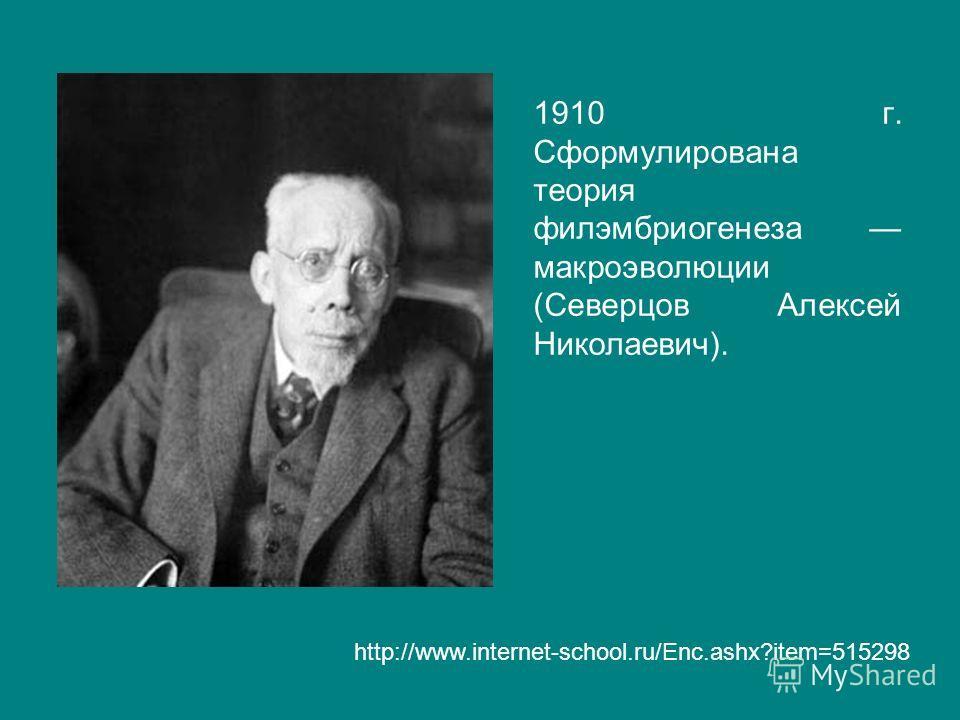 1910 г. Сформулирована теория филэмбриогенеза макроэволюции (Северцов Алексей Николаевич). http://www.internet-school.ru/Enc.ashx?item=515298
