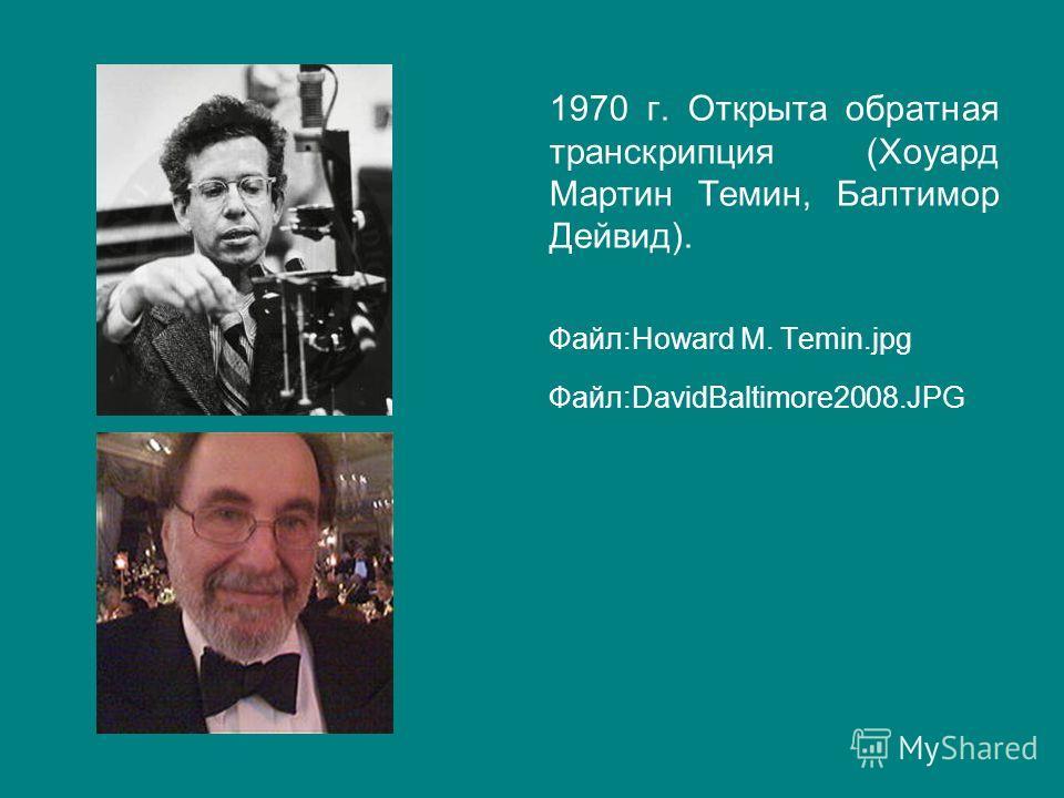 1970 г. Открыта обратная транскрипция (Хоуард Мартин Темин, Балтимор Дейвид). Файл:Howard M. Temin.jpg Файл:DavidBaltimore2008.JPG