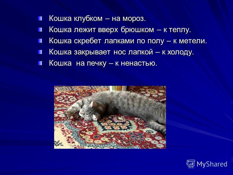 Кошка клубком – на мороз. Кошка лежит вверх брюшком – к теплу. Кошка скребет лапками по полу – к метели. Кошка закрывает нос лапкой – к холоду. Кошка на печку – к ненастью.