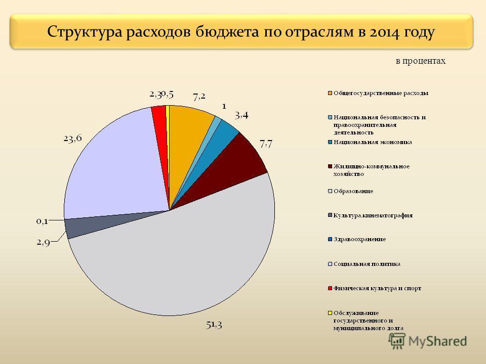 Структура расходов бюджета по отраслям в 2014 году в процентах
