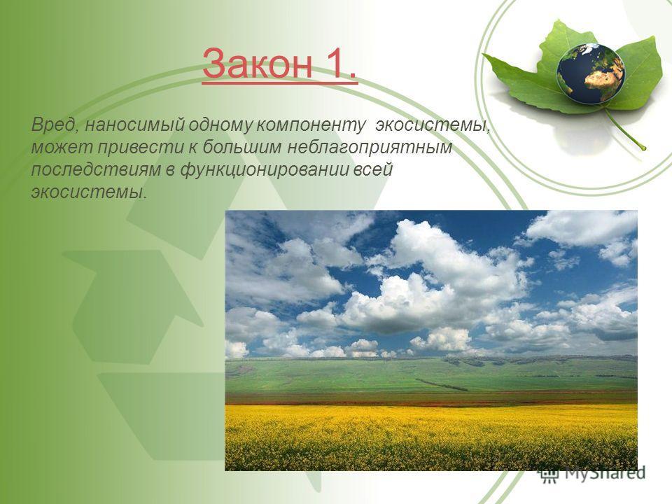 Закон 1. Вред, наносимый одному компоненту экосистемы, может привести к большим неблагоприятным последствиям в функционировании всей экосистемы.