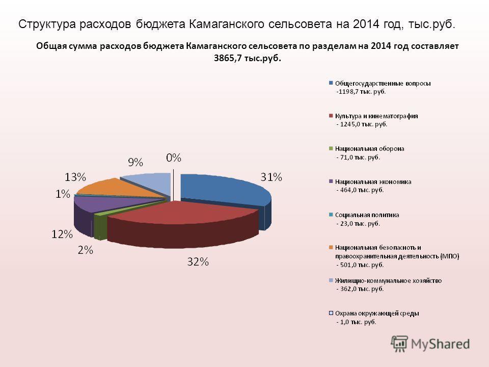 Общая сумма расходов бюджета Камаганского сельсовета по разделам на 2014 год составляет 3865,7 тыс.руб. Структура расходов бюджета Камаганского сельсовета на 2014 год, тыс.руб.