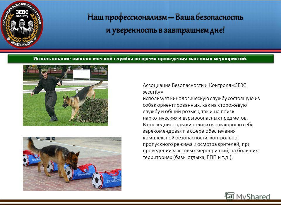 Использование кинологической службы во время проведения массовых мероприятий. Ассоциация Безопасности и Контроля «ЗЕВС security» использует кинологическую службу состоящую из собак ориентированных, как на сторожевую службу и общий розыск, так и на по