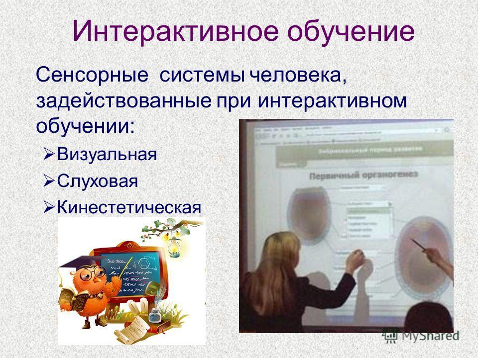 Интерактивное обучение Сенсорные системы человека, задействованные при интерактивном обучении: Визуальная Слуховая Кинестетическая