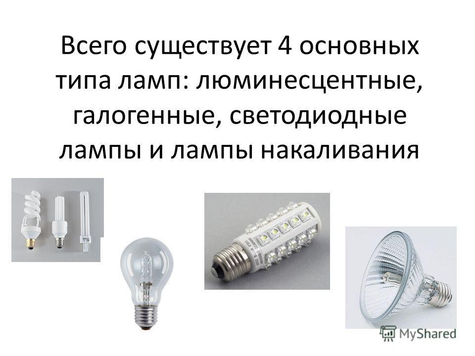 Всего существует 4 основных типа ламп: люминесцентные, галогенные, светодиодные лампы и лампы накаливания