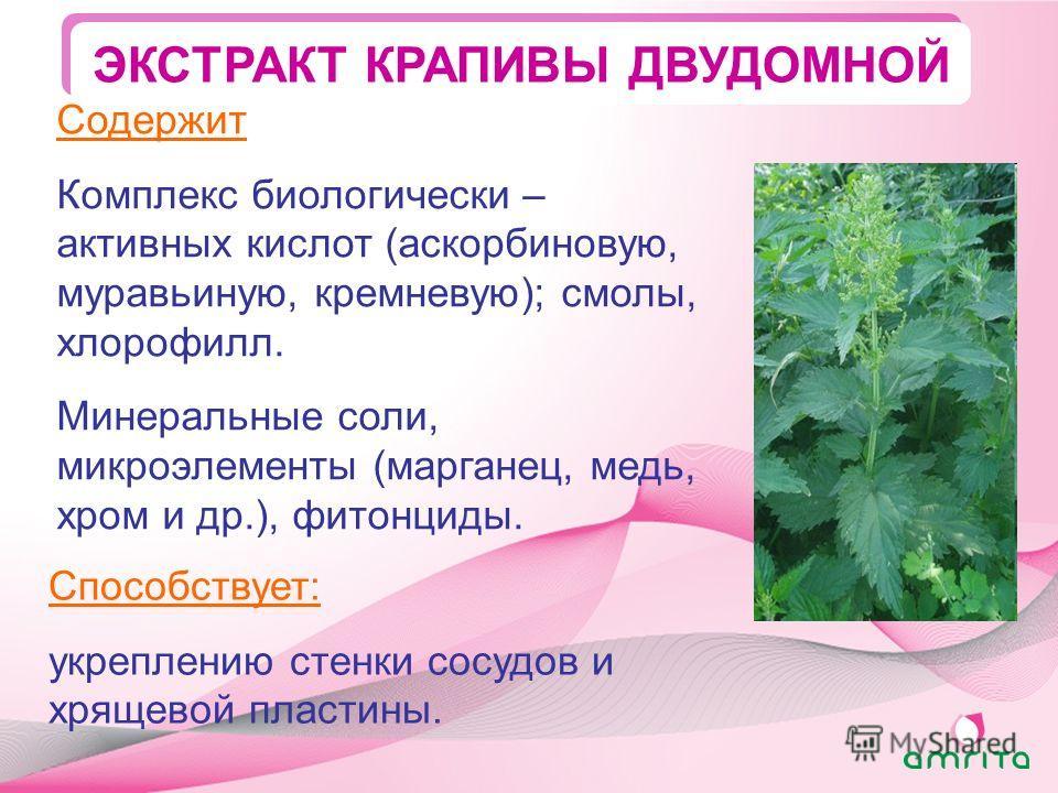 ЭКСТРАКТ КРАПИВЫ ДВУДОМНОЙ Способствует: укреплению стенки сосудов и хрящевой пластины. Содержит Комплекс биологически – активных кислот (аскорбиновую, муравьиную, кремневую); смолы, хлорофилл. Минеральные соли, микроэлементы (марганец, медь, хром и