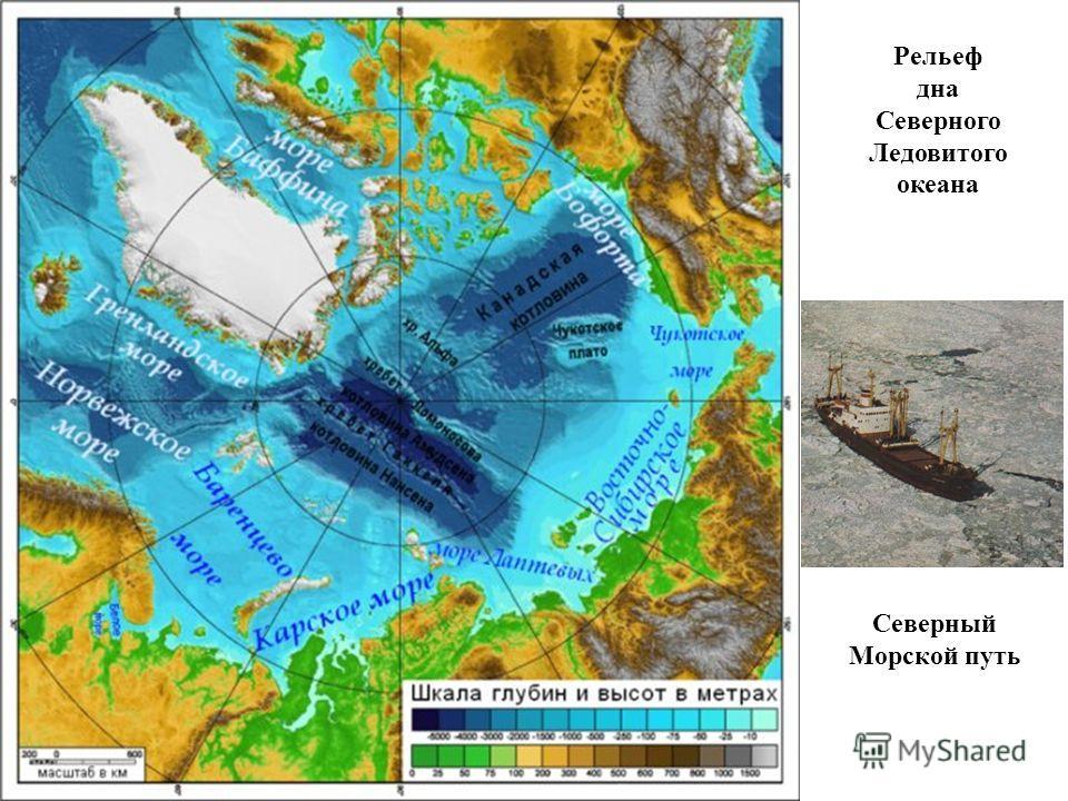 Рельеф дна Северного Ледовитого океана Северный Морской путь
