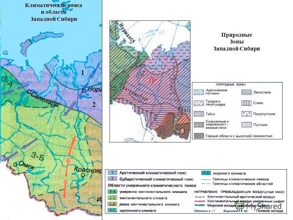 1 2 Климатические пояса и области Западной Сибири Природные Зоны Западной Сибири