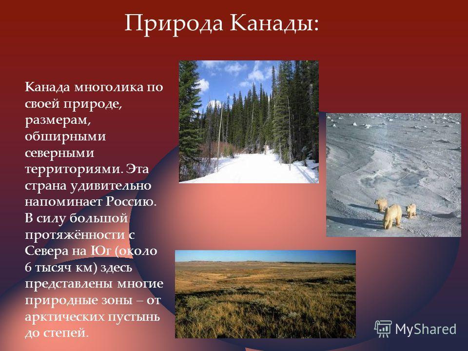 Природа Канады: Канада многолика по своей природе, размерам, обширными северными территориями. Эта страна удивительно напоминает Россию. В силу большой протяжённости с Севера на Юг (около 6 тысяч км) здесь представлены многие природные зоны – от аркт