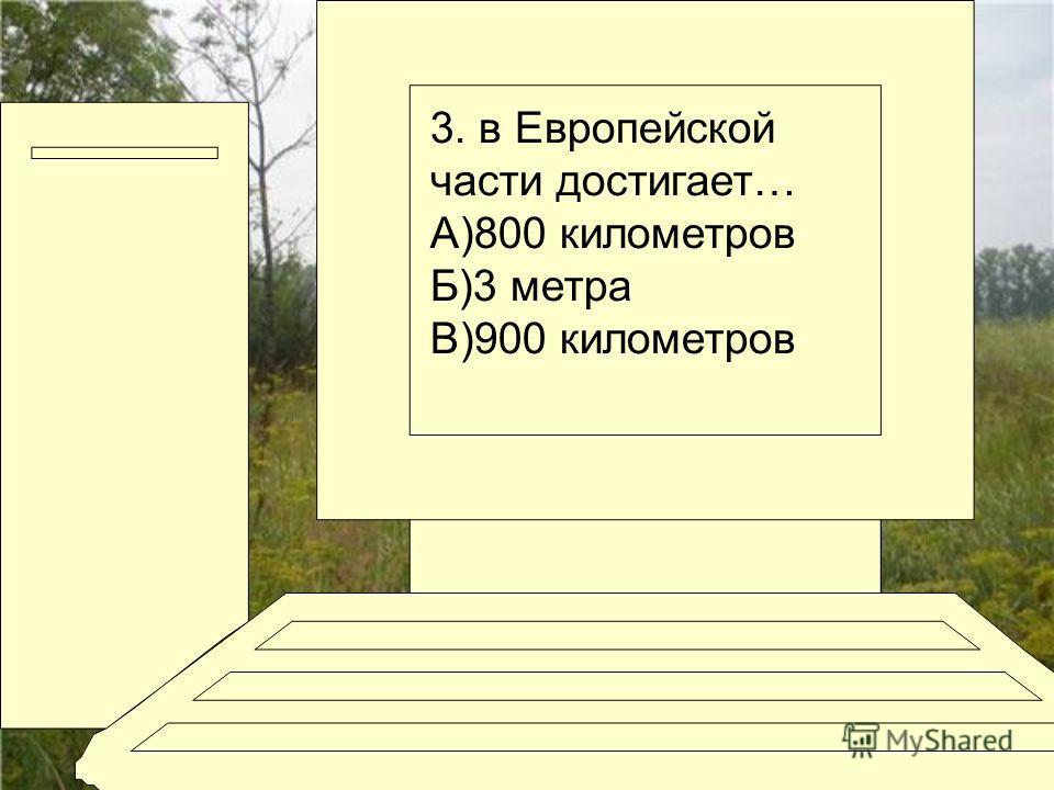 3. в Европейской части достигает… А)800 километров Б)3 метра В)900 километров