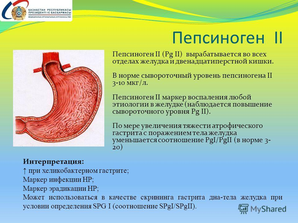Пепсиноген II Пепсиноген II (Pg II) вырабатывается во всех отделах желудка и двенадцатиперстной кишки. В норме сывороточный уровень пепсиногена II 3-10 мкг/л. Пепсиноген II маркер воспаления любой этиологии в желудке (наблюдается повышение сывороточн