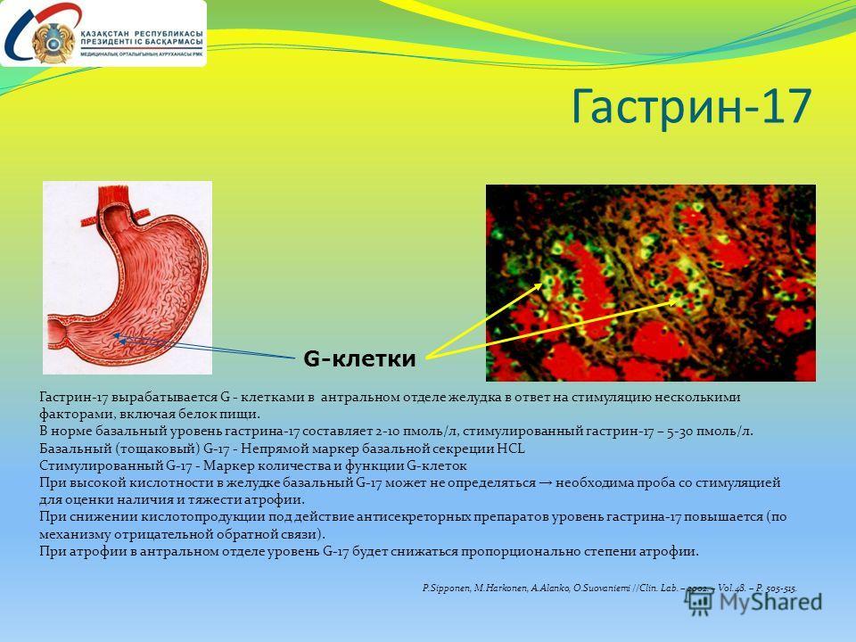 Гастрин-17 G-клетки Гастрин-17 вырабатывается G - клетками в антральном отделе желудка в ответ на стимуляцию несколькими факторами, включая белок пищи. В норме базальный уровень гастрина-17 составляет 2-10 пмоль/л, стимулированный гастрин-17 – 5-30 п
