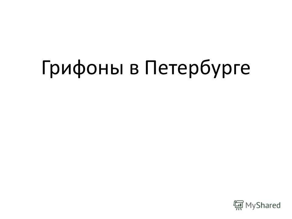 Грифоны в Петербурге