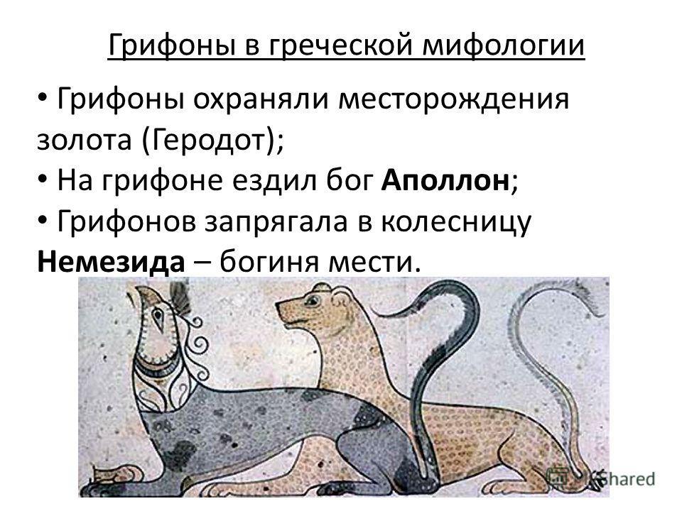 Грифоны в греческой мифологии Грифоны охраняли месторождения золота (Геродот); На грифоне ездил бог Аполлон; Грифонов запрягала в колесницу Немезида – богиня мести.