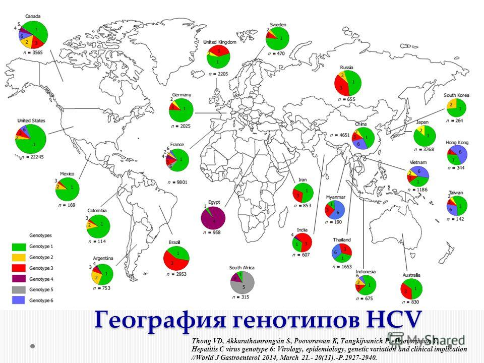 Thong VD, Akkarathamrongsin S, Poovorawan K, Tangkijvanich P., Poovorawan Y. Hepatitis C virus genotype 6: Virology, epidemiology, genetic variation and clinical implication //World J Gastroenterol 2014, March 21.- 20(11).-P.2927-2940. География гено
