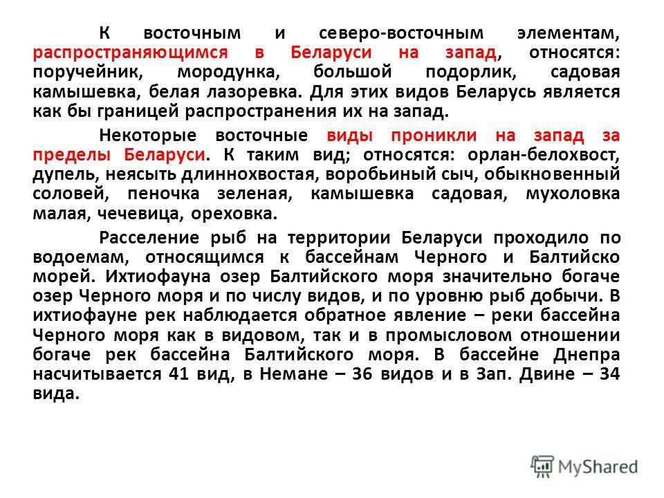 К восточным и северо-восточным элементам, распространяющимся в Беларуси на запад, относятся: поручейник, мородунка, большой подорлик, садовая камышевка, белая лазоревка. Для этих видов Беларусь является как бы границей распространения их на запад. Не