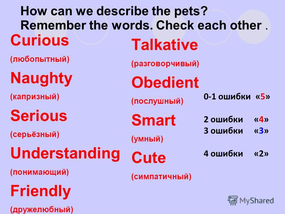 How can we describe the pets? Remember the words. Check each other. Curious (любопытный) Naughty (капризный) Serious (серьёзный) Understanding (понимающий) Friendly (дружелюбный) Talkative (разговорчивый) Obedient (послушный) Smart (умный) Cute (симп