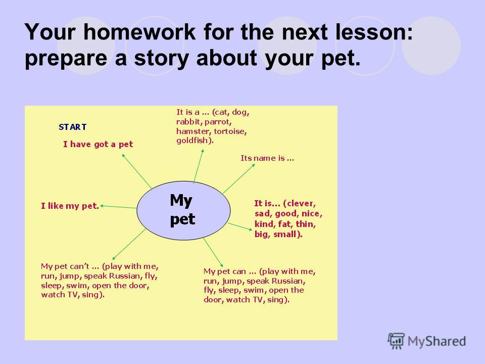 Your homework for the next lesson: prepare a story about your pet.