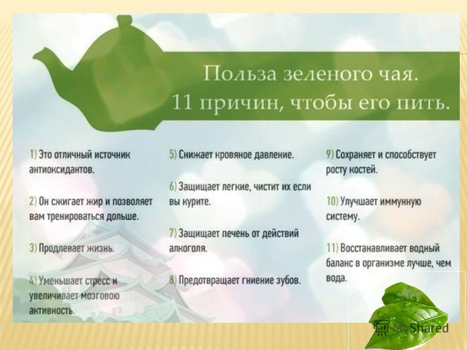 Летом рекомендуется пить зеленый чай. Он прекрасно утоляет жажду в жаркую погоду. Его пьют как холодным, так и горячим.