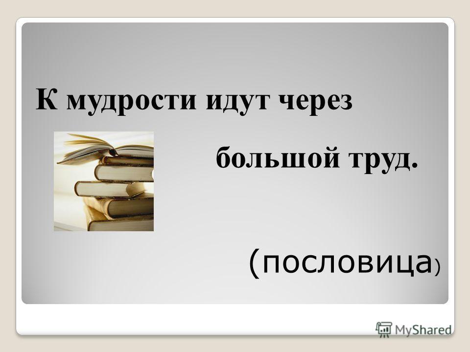 К мудрости идут через большой труд. (пословица )