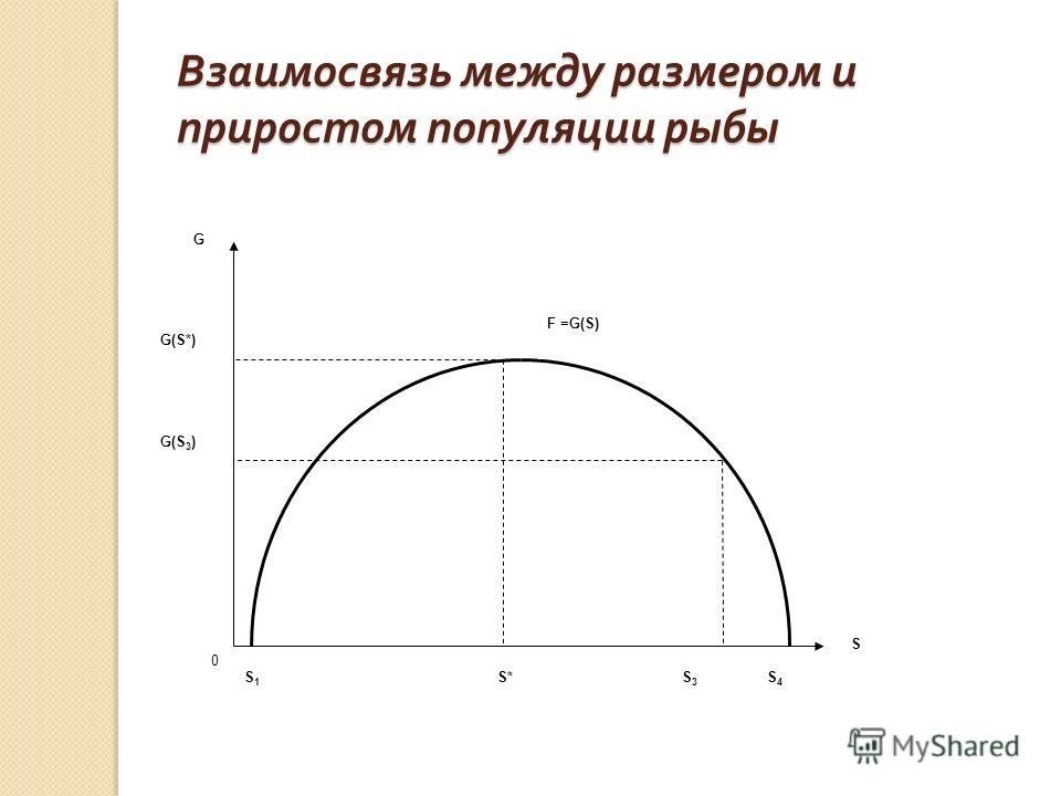 Взаимосвязь между размером и приростом популяции рыбы G(S 3 ) G(S*) G S S4S4 S3S3 S*S1S1 0 F =G(S)