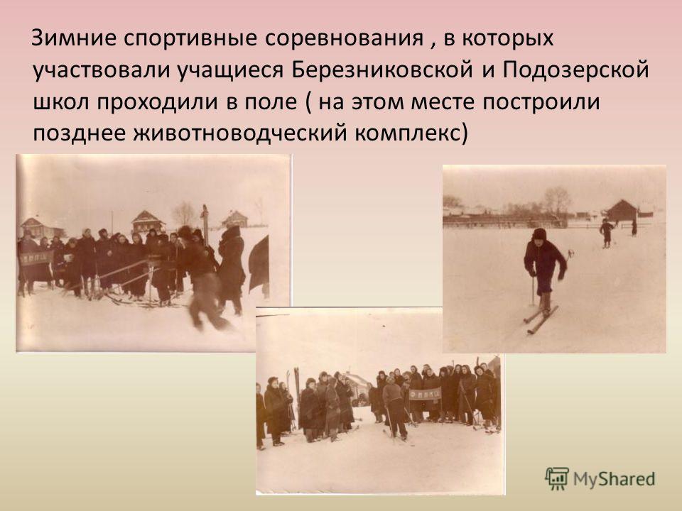 Зимние спортивные соревнования, в которых участвовали учащиеся Березниковской и Подозерской школ проходили в поле ( на этом месте построили позднее животноводческий комплекс)