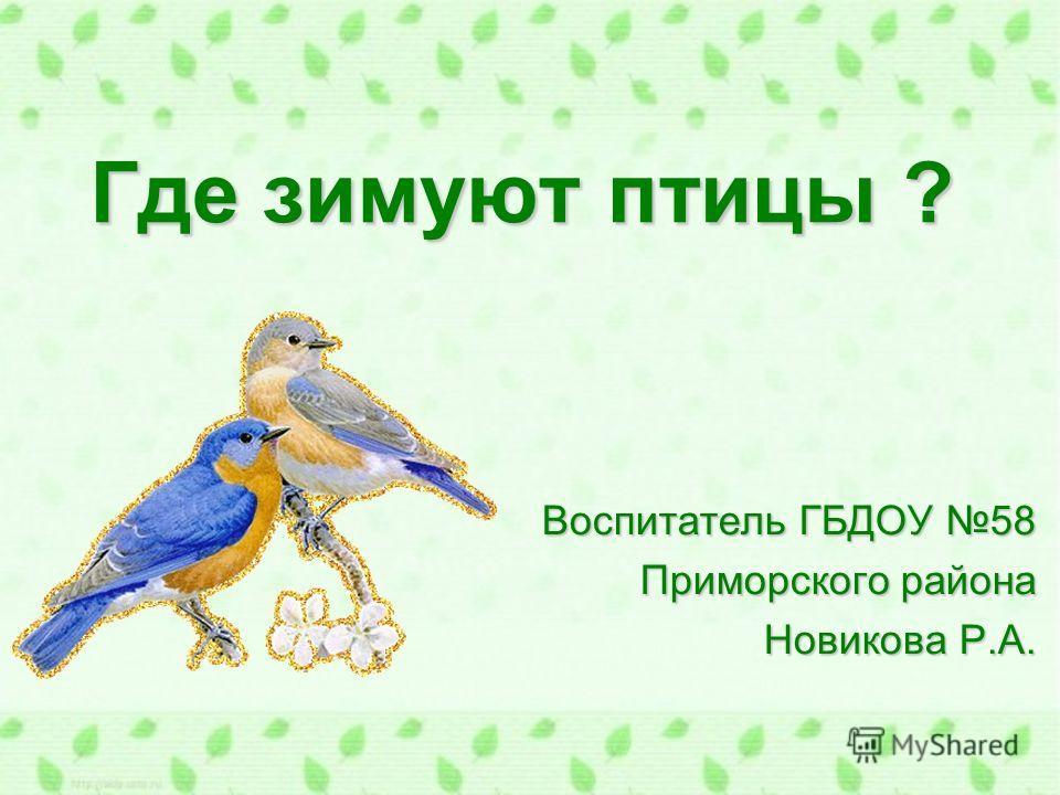 Где зимуют птицы ? Воспитатель ГБДОУ 58 Приморского района Новикова Р.А.