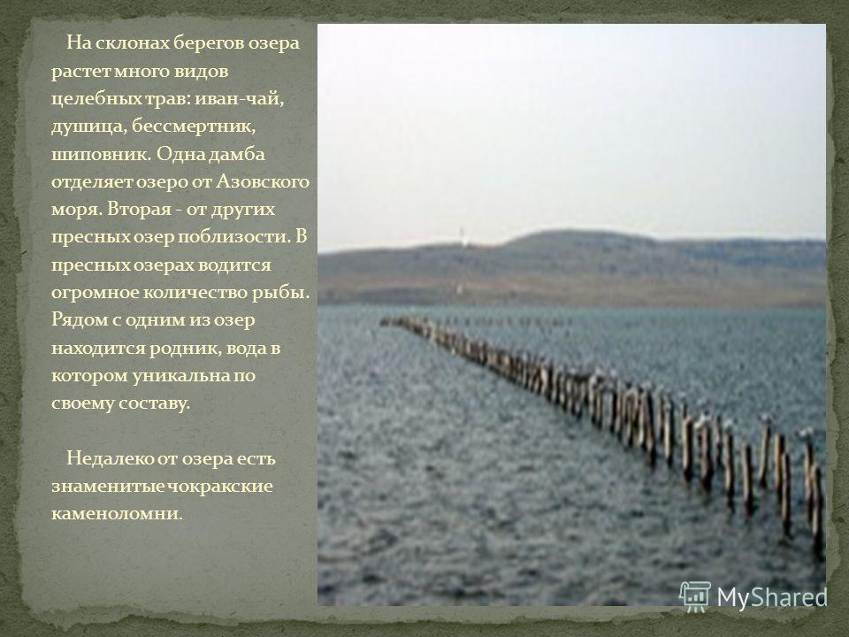 На склонах берегов озера растет много видов целебных трав: иван-чай, душица, бессмертник, шиповник. Одна дамба отделяет озеро от Азовского моря. Вторая - от других пресных озер поблизости. В пресных озерах водится огромное количество рыбы. Рядом с од