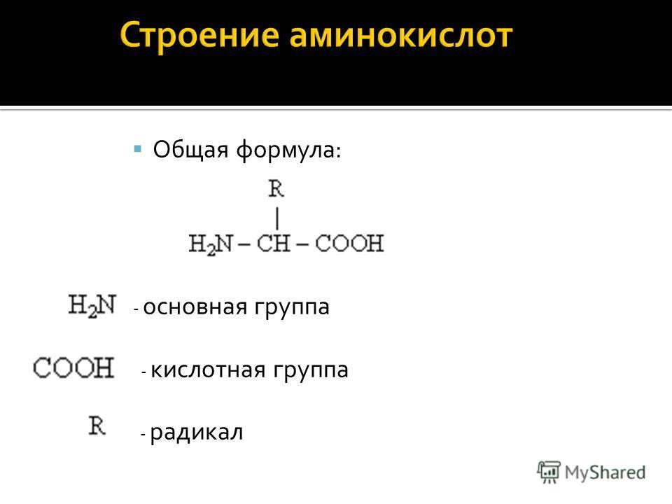 Общая формула: - основная группа - кислотная группа - радикал