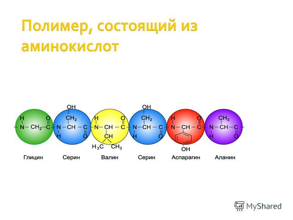 Полимер, состоящий из аминокислот